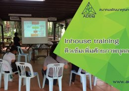 inhouse-training