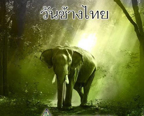 13 มีนาคม วันช้างไทย